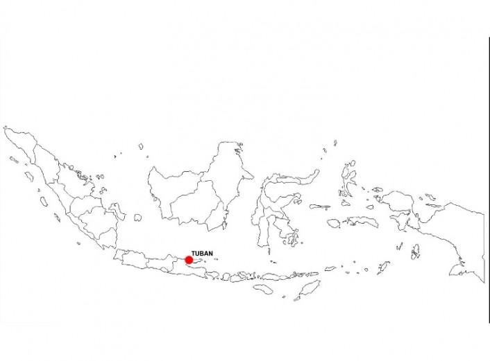 Tolva Indonesia 04 - Proyectos ACCE Ingeniería